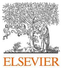 ELSEVIER'S PROGRAMME